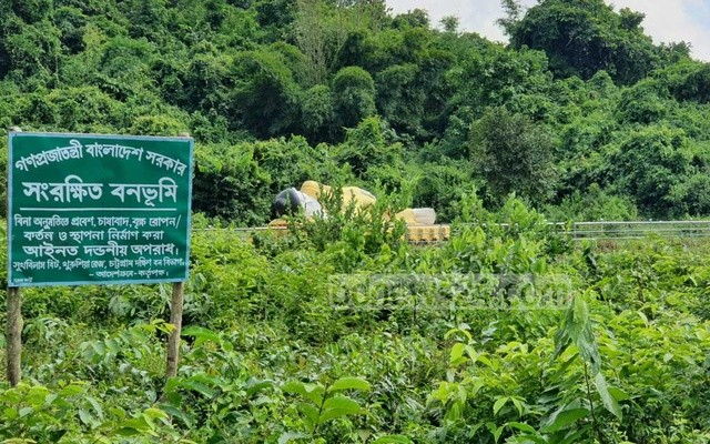Bangladesh moves to free 138,613 acres of reserved forestland from encroachment