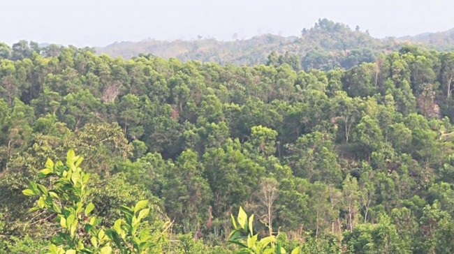 836 acres of illegally occupied forest land recovered so far: Environment ministry